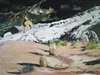 Home Turf - Yellow Dingo - Ruby Gap 2013 by Banx MC6600