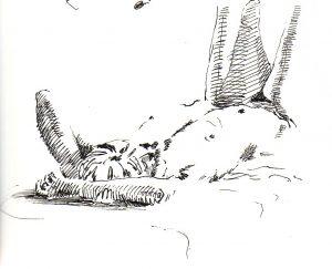 Pen Sketch 2